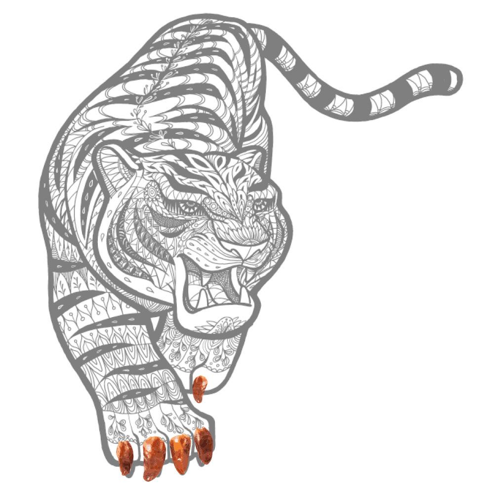 Chilli Zoo tiger
