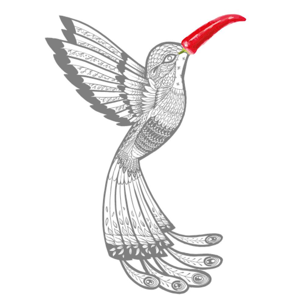 Chilli Zoo hummingbird