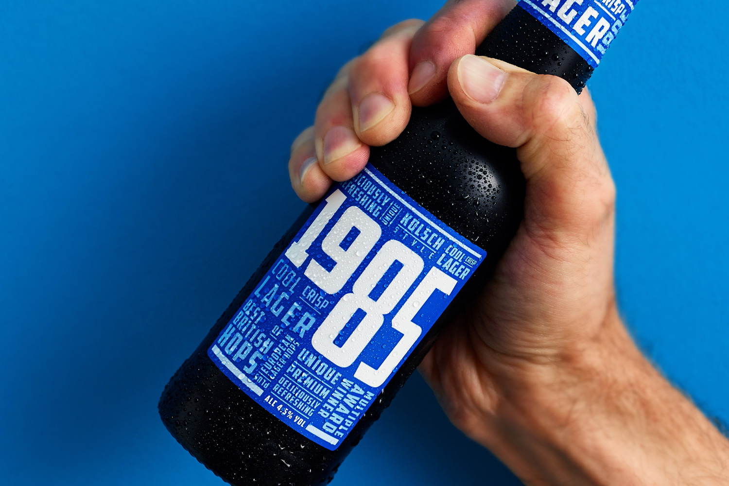 Wye Valley Brewery 1985 lager